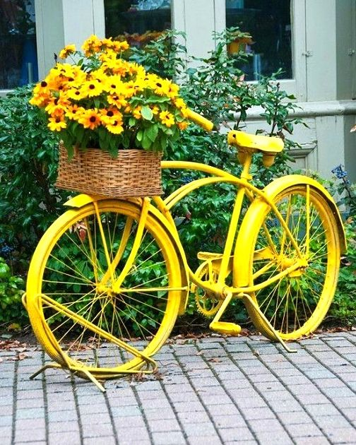 upcycling an old bike in the garden