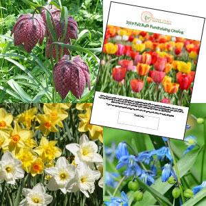 Fall Bulb Flower Fundraising Catalog
