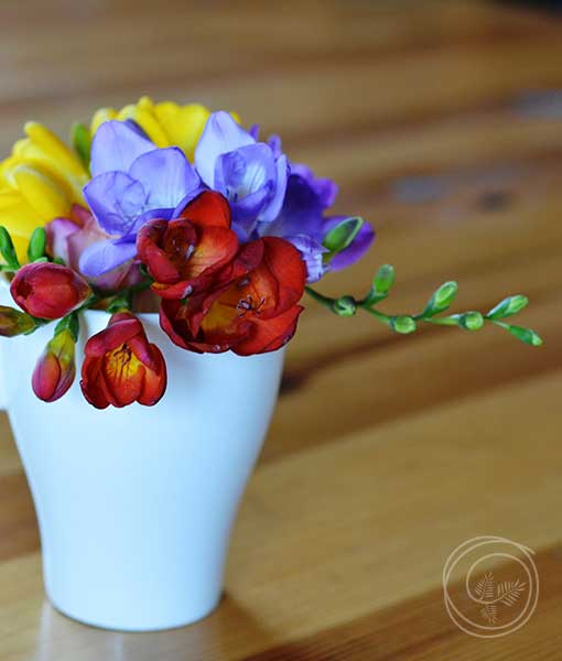 Cut arrangement of summer Freesia flowers in a mug