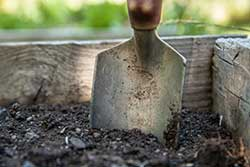 Preparing to plant a summer container garden